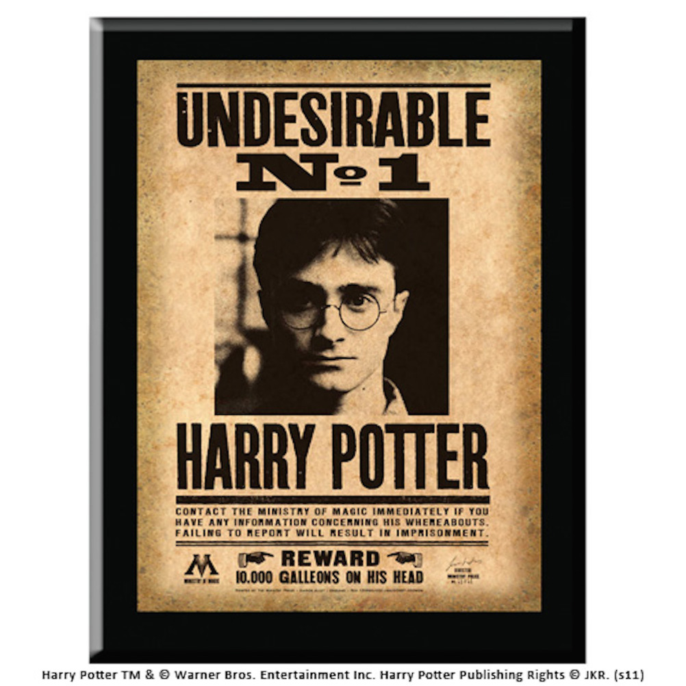 Harry Potter Undesirable Plaque